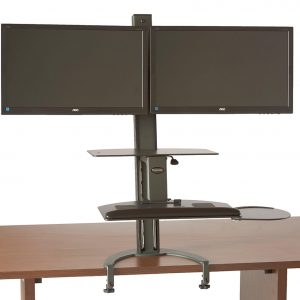 HealthPostures Taskmate Dual Monitor Stand